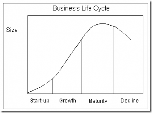businesslifecycle
